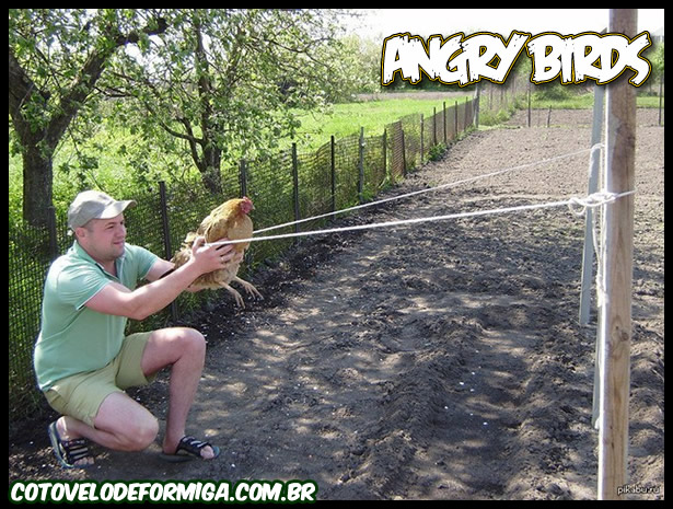 Angry Birds Real
